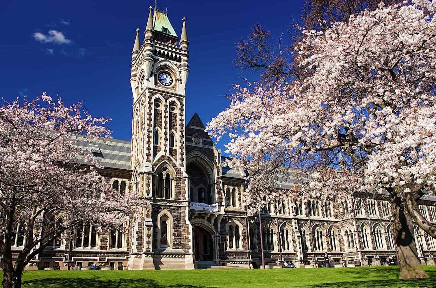 Университеты Новой Зеландии
